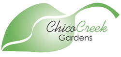 Chico Creek Business Logo Design